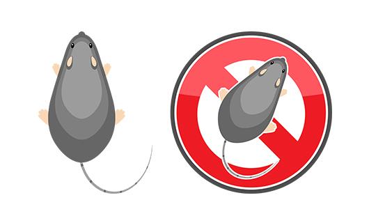 ネズミ駆除・消毒