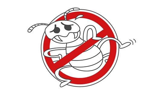 白アリ消毒